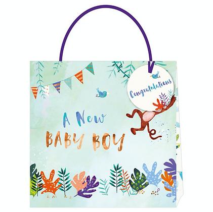 Baby Boy Gift Bag