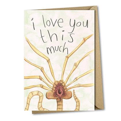 Valentines day card An Independent Zebra Edinburgh