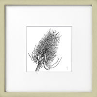 x2_Light_Brown_Frame_Teasel_£50.jpg