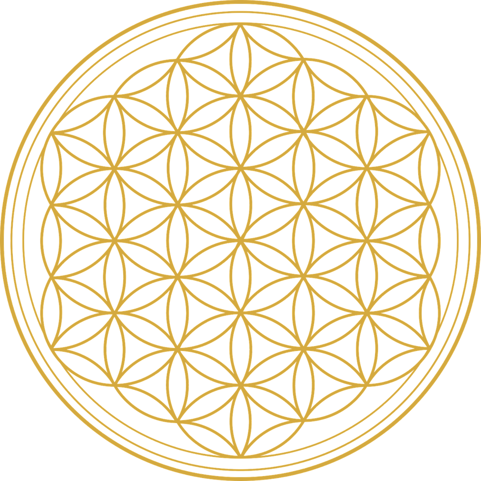 flower-of-life-2648527_1280.png