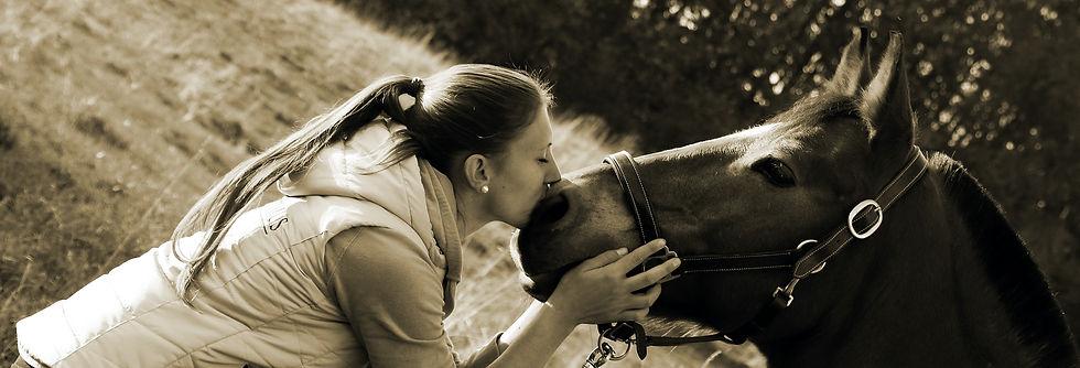 Tierkommunikation, Energiepraxis Isabel Fiala, Reden mit Tieren, Fragen an Tiere