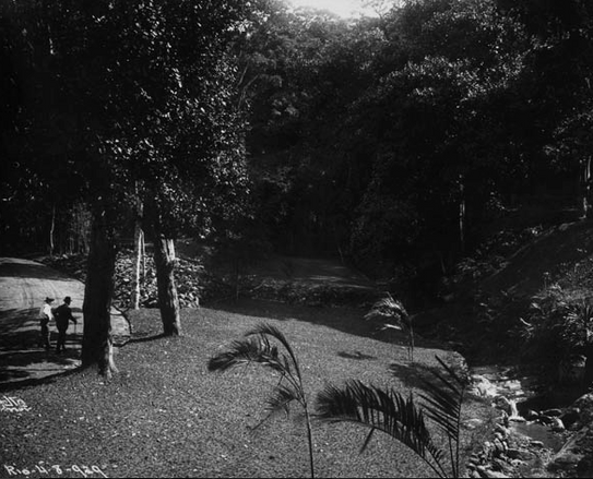 Foto de Augusto Malta, jardins da propriedade e rio Rainha, 1929