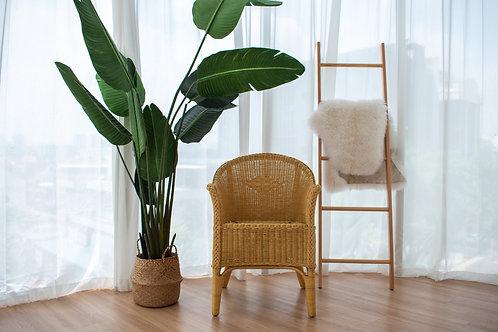 Dutch Wicker Chair S.101 (Left 2 pcs)