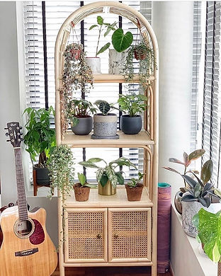 bookshelf with cabinet .jpg