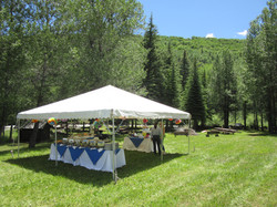 20' x 20' frame with buffet and drink table