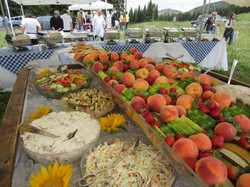 Salad bar with fresh fruit at BBQ party