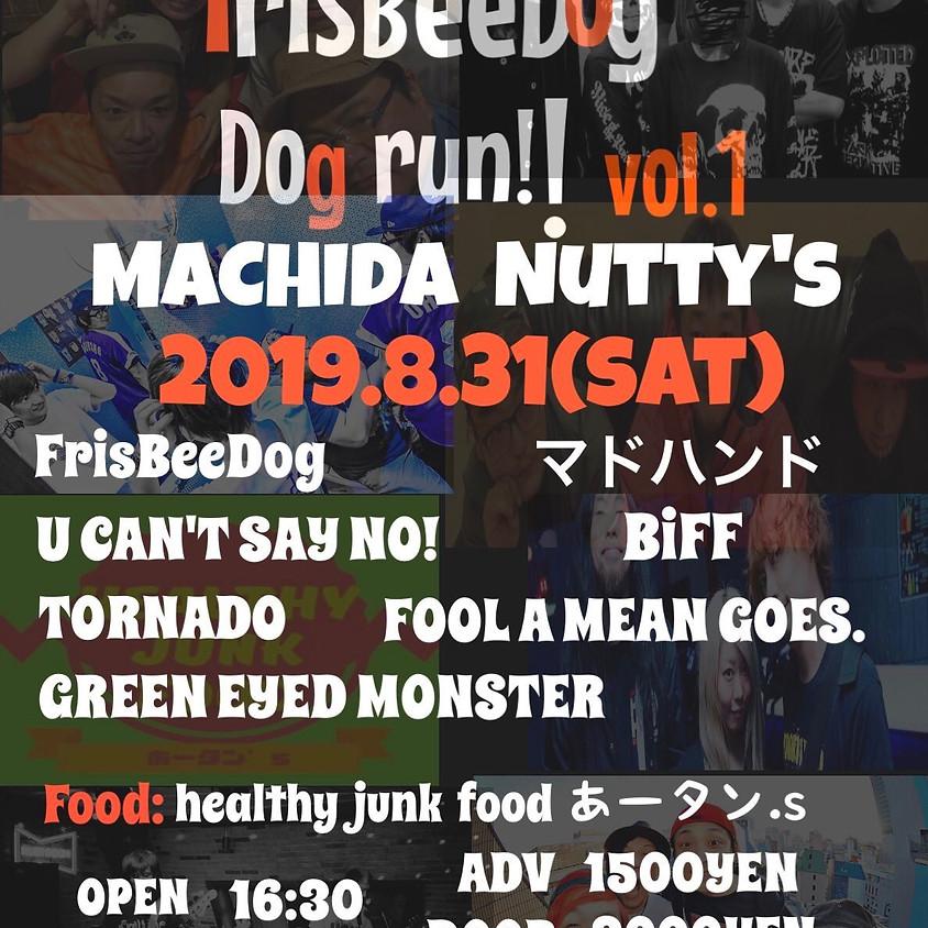 FrisBeeDog pre Dog run!! vol.1