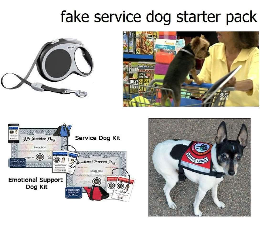 Service Dog Law