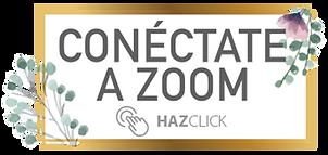 boton-ZOOM.png