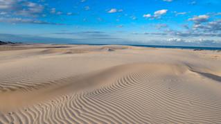 Gulf Coast Oasis- Texas