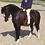 Thumbnail: Club Equestrian Private Lesson Voucher.
