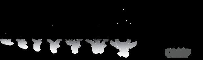 NarrativeCreep_logo.png