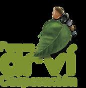 Logo CPA (1).png