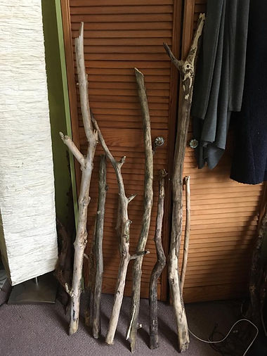 oak 3.jpeg