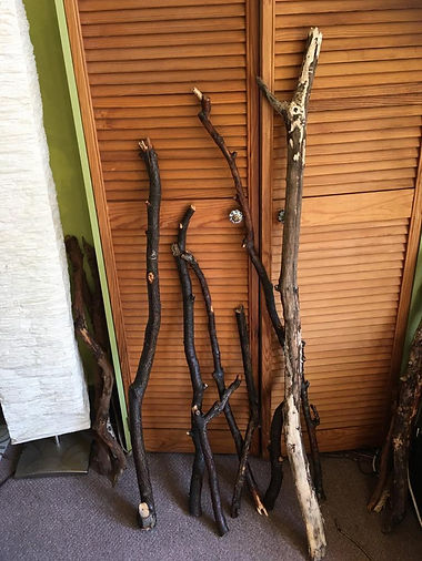 oak 2.jpeg