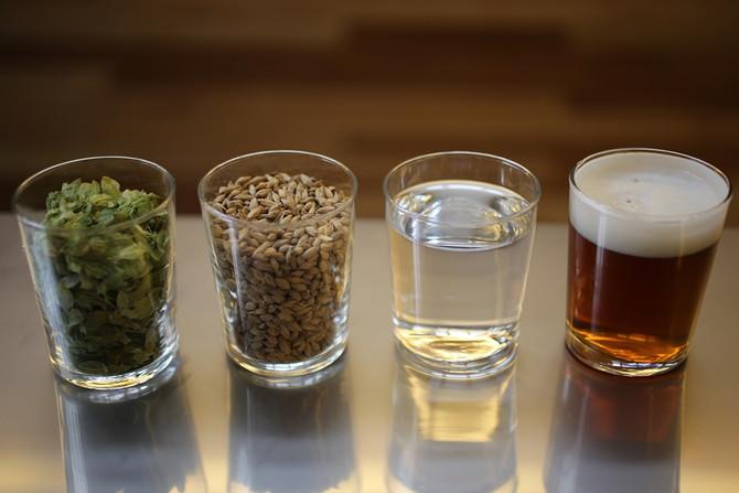 La Fabrication de la Bière - Partie 1 : les ingrédients