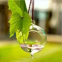 Clear Hanging Votive Candle Holder / Terrarium Glass Vase
