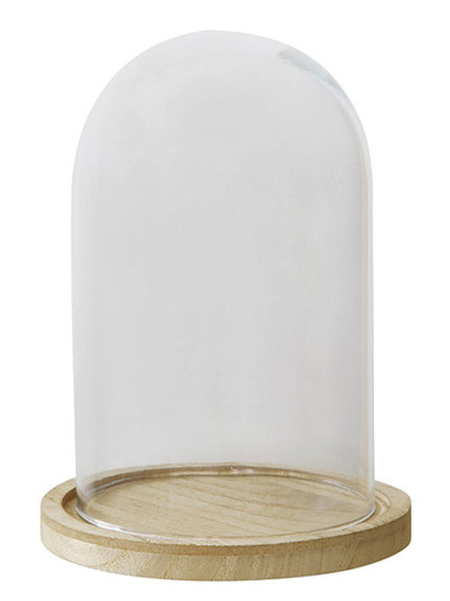 Glass Cloche and wood base