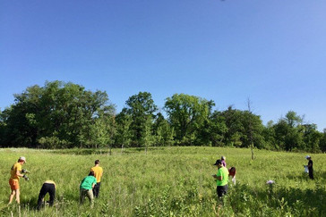 The SOS Green Team helping to maintain the meadow