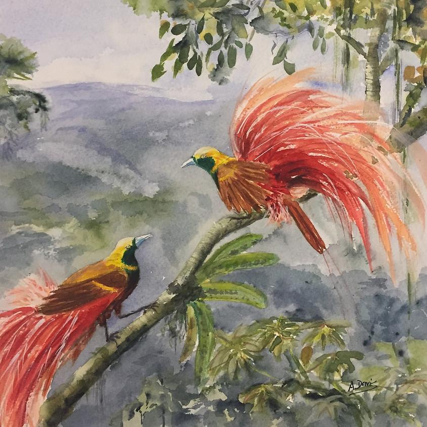 Birds, Butterflies and Bombs!  - Angela Davis