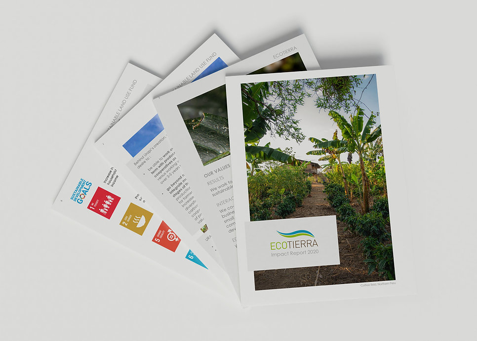Montage Mockup Sustainability report.jpg