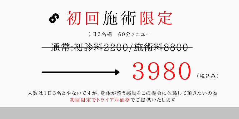 整体料金が初回限定3980円