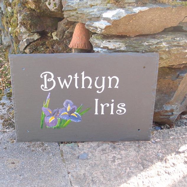 Bwthyn Iris.jpg