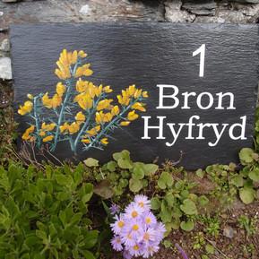 Bron Hyfryd