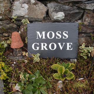 Moss Grove