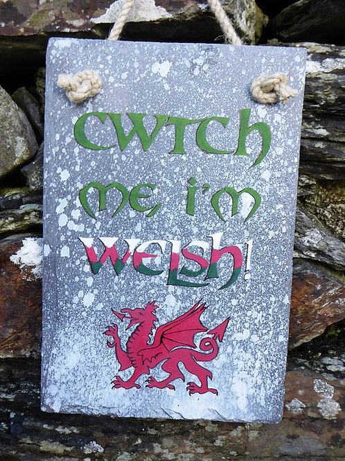 Cwtch me I'm Welsh