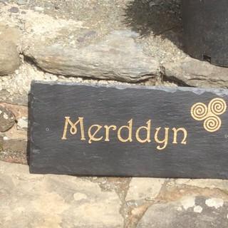 Merddyn