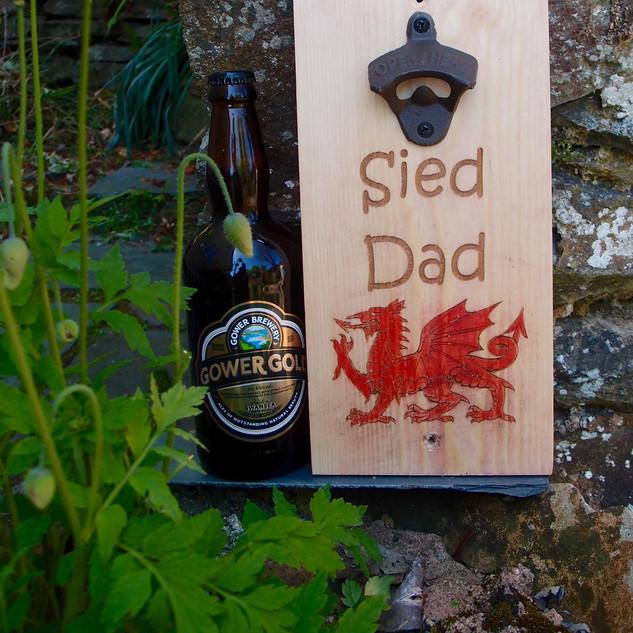 Sied dad-dragon2.jpg