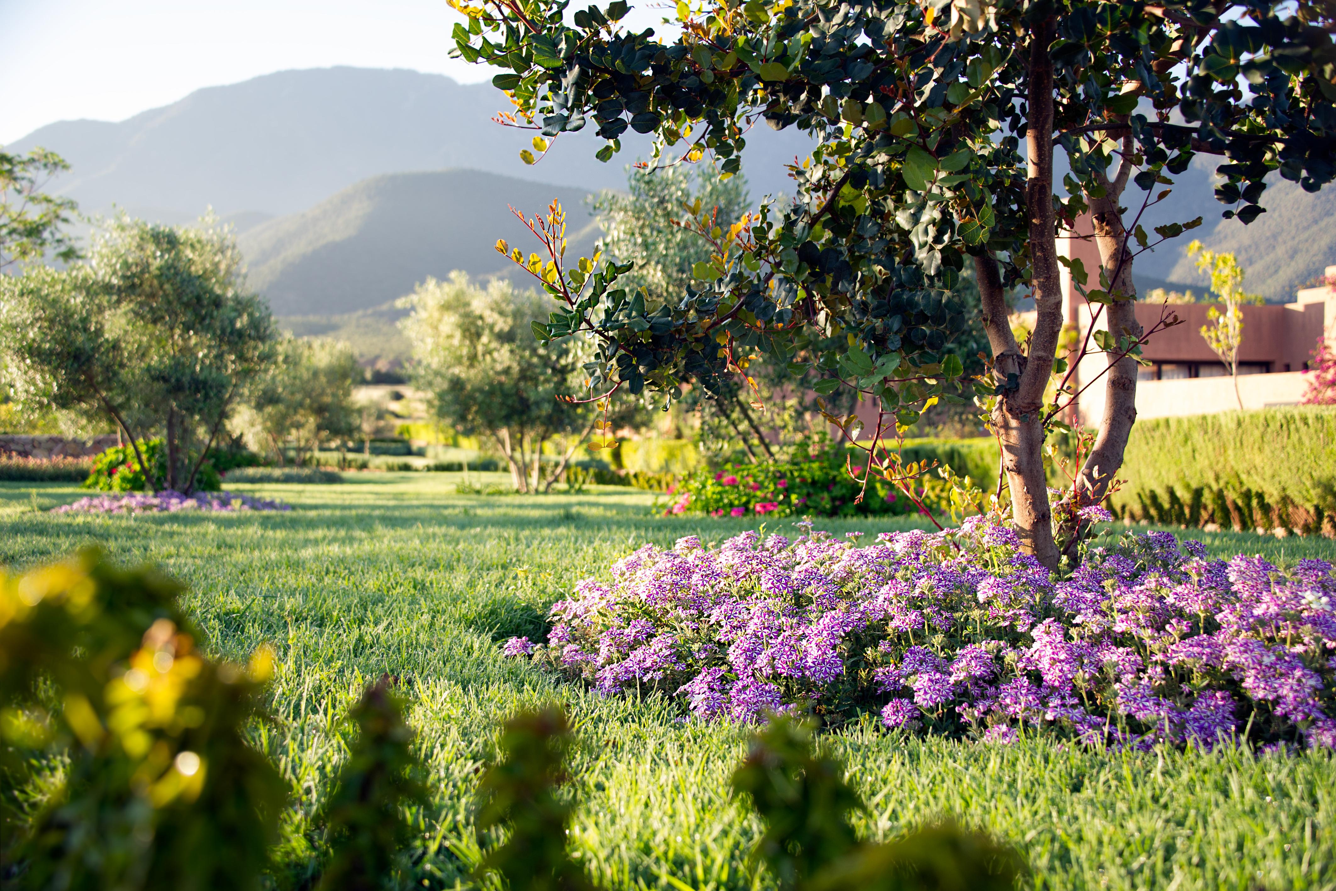 lamandier_gardens