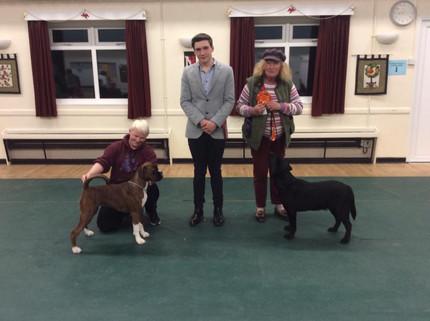 Poole Match Dec 2019 Puppy