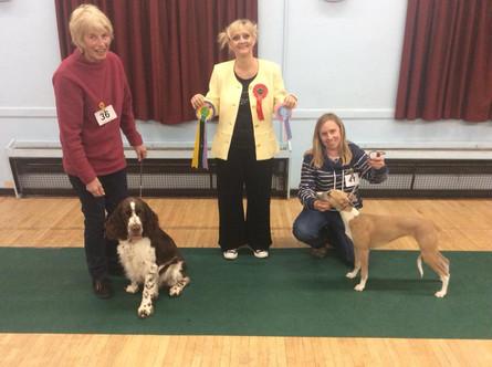 2018 November match Puppy Winners