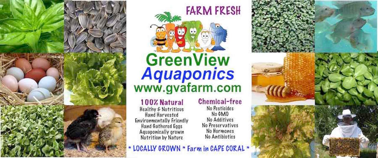 Who We Are | greenview-aquaponics