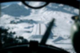 Janvier 2010-4 113.jpg