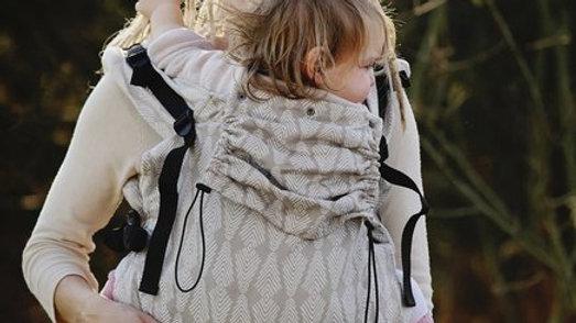 Little Frog XL Toddler Carrier - Sandy Pines