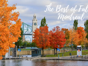 The Best of Fall in Montreal