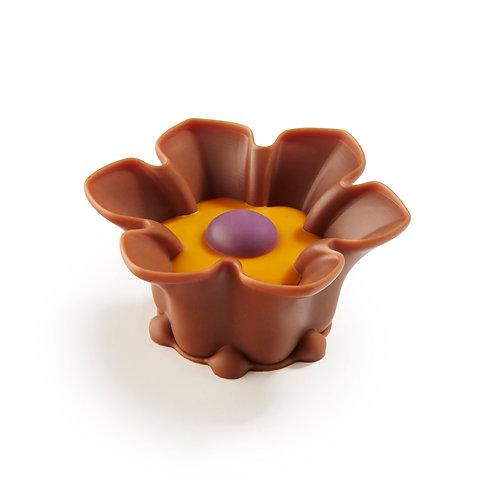 Belgian Chocolate Blossom