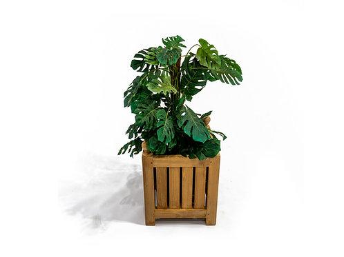 Teak Planter, Small
