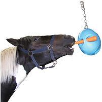 Carrot-Ball-Horse_horsetoy.jpg