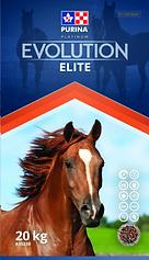 EV_elite_en_edited.png