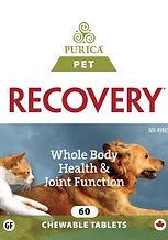 Pet-Recovery-60T-1-247x353.jpg