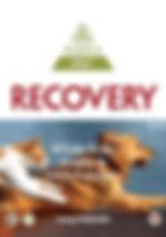 Pet-Recovery-350g-247x353.jpg
