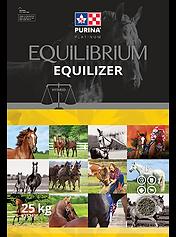 EQ_equilizer_en.png