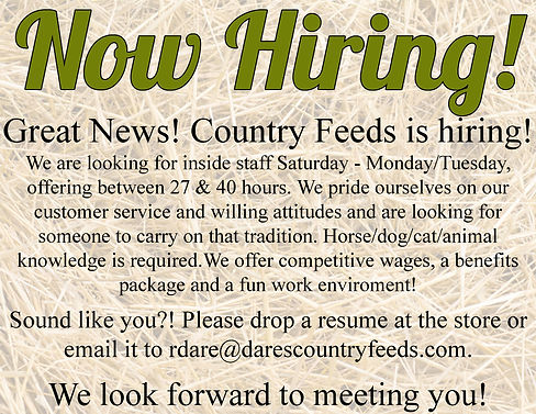 hiring2021.jpg