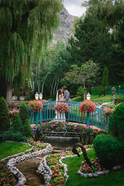 Lacaille's Beautiful Gardens