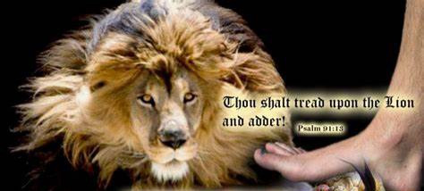 Psalm 91:13