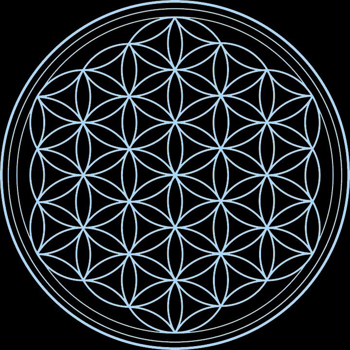 Flower Of Life Symbol Png